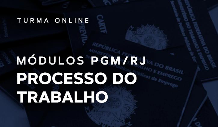 Módulo PGM Processo do Trabalho 2019